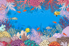 Underwater Background with Corals  and Fishes Royalty Free Stock Photos