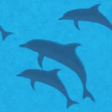 Underwater background with dolphins. Stock Photo