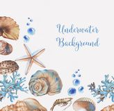 Underwater background. Hand-drawn watercolor underwater background. Tender frame with marine objects. Sea template for greeting card, wedding invitation Vector Illustration