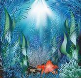 Underwater background. Royalty Free Stock Photos