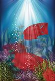 Underwater banner with fish Herichthys Carpintis Super Red Stock Images