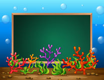 Underwater banner Royalty Free Stock Image