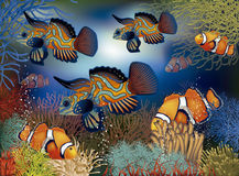 Underwater banner with tropical fish,. Vector illustration Royalty Free Stock Photos