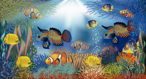 Underwater banner tropical fish, vector stock illustration