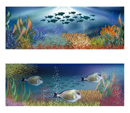 Underwater banners with tropical fish Royalty Free Stock Photos