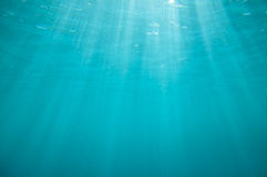 Underwater blue background Stock Photography
