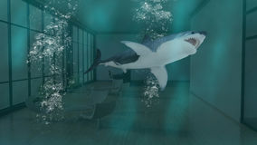 Underwater Business Office, Shark, Danger. Abstract concept with a business office underwater and and shark swimming inside. Can be used for business, sales, and Stock Image