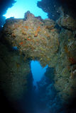 Underwater canyon Royalty Free Stock Photography
