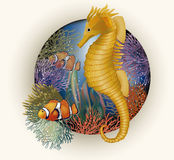Underwater card with seahorse, vector Stock Images