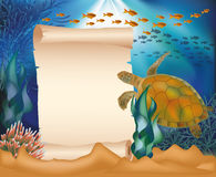 Underwater card with turtle and old paper Stock Image