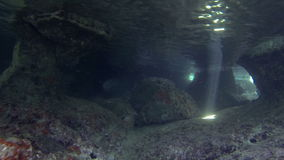 Underwater Cave. HD footage of an underwater cave with a shaft of sunlight in it