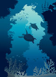 Underwater cave, sea, turtles, coral reef, fishes. Stock Photo