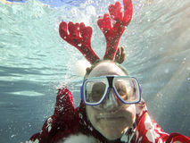 Underwater Christmas reindeer Stock Photography