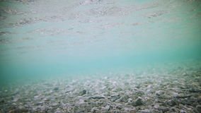 Underwater Clear River Bottom stock footage
