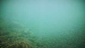 Underwater Clear River Bottom stock video footage