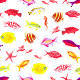Underwater colorful watercolor seamless vector print. Underwater colorful fauna watercolor seamless vector print Stock Image