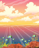 Underwater coral reef, fish, sea, sunset sky, clouds. Stock Photo