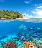 Underwater coral reef with scuba diver. Underwater view of coral reef and scuba diver with horizon and water surface split by waterline. Beautiful nonsettled royalty free stock photo