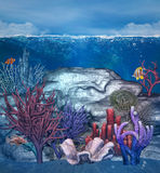 Underwater corals background. Underwater background with fish and corals Royalty Free Stock Photo