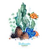 Watercolor composition with multicolored corals,seashells,seaweeds and turtle. Underwater creatures.Watercolor composition with multicolored corals,seashells stock illustration