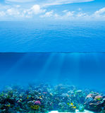 Underwater deep with water surface Royalty Free Stock Photos