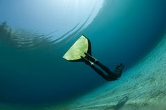 Underwater diver. A diver in a black diving suit, swimming underwater Royalty Free Stock Photos