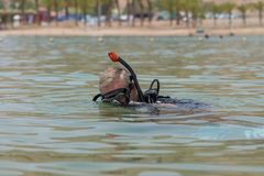 Underwater diver with breathing apparatus dives into the sea. Popular water sport and leisure activity. Underwater diver with breathing apparatus dives into the stock images