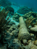 Underwater divers view of old cannon from a ship on the floor of the coral reef Stock Image