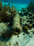 Underwater divers view of old cannon from a ship l Stock Images