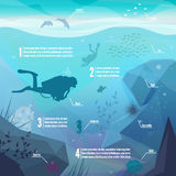 Underwater diving infographics. Landscape of marine life - Island in the ocean and underwater world with different animals. Low polygon style flat Stock Photos