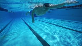 Underwater diving, man swimming in clear pool water stock video footage
