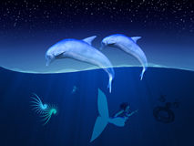 Underwater dolphins and mermaid Stock Image