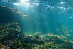 Underwater dos raios de sol visto do fundo do mar em um recife Fotografia de Stock Royalty Free