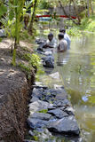 Underwater dry stone walling Kerala India Stock Image