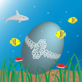 Underwater Easter Stock Images