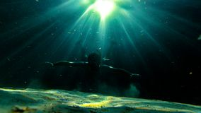 Underwater exploration in a paradise island royalty free stock photo