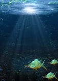 Underwater Fantasy Scene Stock Images