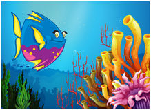 An underwater with fish and beautiful coral reefs. Illustration of an underwater view with a big fish and beautiful coral reefs on a white background Royalty Free Stock Photo