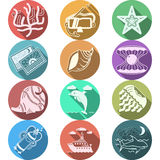 Underwater flat color icons Royalty Free Stock Image