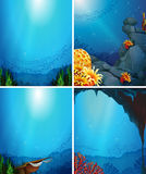 Underwater. Four underwater scenes with fish and coral reef Royalty Free Stock Photography