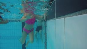Underwater fun stock footage