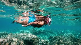 Underwater girl snorkeling in a clear tropical water at coral reef. Young woman swimming above bright coral reef in the stock video footage