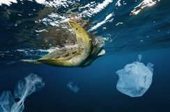 Underwater global problem with plastic rubbish stock photography