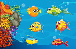 Underwater. Illustration of fish swimming underwater Royalty Free Stock Image