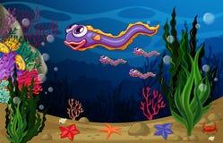 Underwater Stock Image
