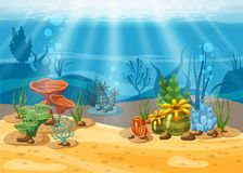 Underwater illustration and life. the beauty of marine life. Algae and coral reefs are beautiful and colorful, vector. Isolated Royalty Free Stock Photo