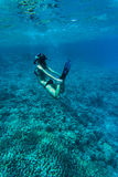 Underwater image of a young lady snorkeling and diving in a tropical sea with hands on legs. Beautiful woman body under water. Underwater image of a young lady royalty free stock images