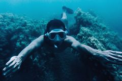 Man snorkeling among seaweed underwater. Underwater image of young man free diver swimming among seaweed Royalty Free Stock Photography