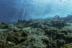 Underwater Landscape with ascending air bubbles. An underwater landscape with a rocky reef. Plenty of air bubbles from scuba-divers are ascending to towards Stock Photography