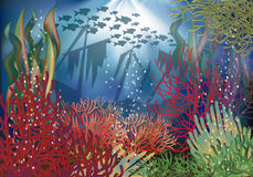 Underwater landscape background Royalty Free Stock Photography
